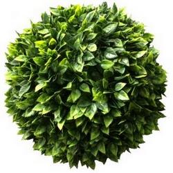 Mondo verde - Siepe artificiale Camargue