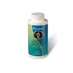 INGENYA - Ingenya Polvere Shampoo Secco