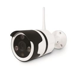 AVIDSEN - Telecamera IP Wi-Fi 720p