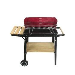 *** - Barbecue a Carbonella 48x28 cm
