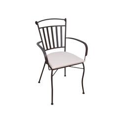 *** - Sedia in Acciaio