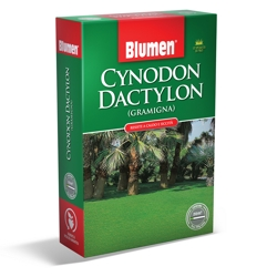 BLUMEN - Semi prato Cynodon