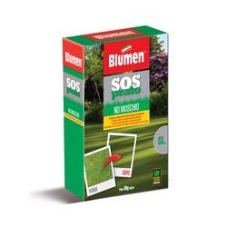 BLUMEN - SOS Prato No Muschio