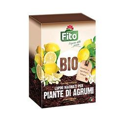 FITO - Fito Lupini 2Kg