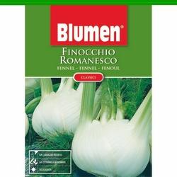 BLUMEN - Finocchio Romanesco