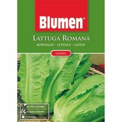 BLUMEN - Lattuga romana