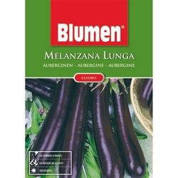 BLUMEN - Melenzana lunga