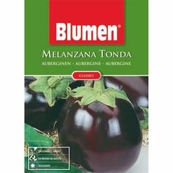 BLUMEN - Melanzana tonda