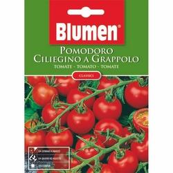 BLUMEN - Pomodoro ciliegino a grappolo