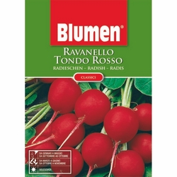 BLUMEN - Ravanello tondo rosso
