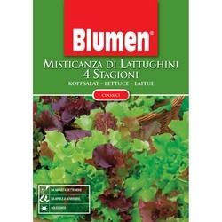 BLUMEN - Misticanza 4 stagioni