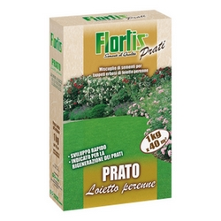 FLORTIS - Prato loietto perenne kg.1 gr
