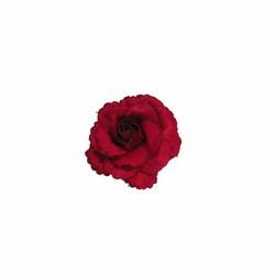 PREQÙ - Rosa con clip