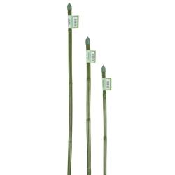 Canna Bamboo Plastificata-1,35 €